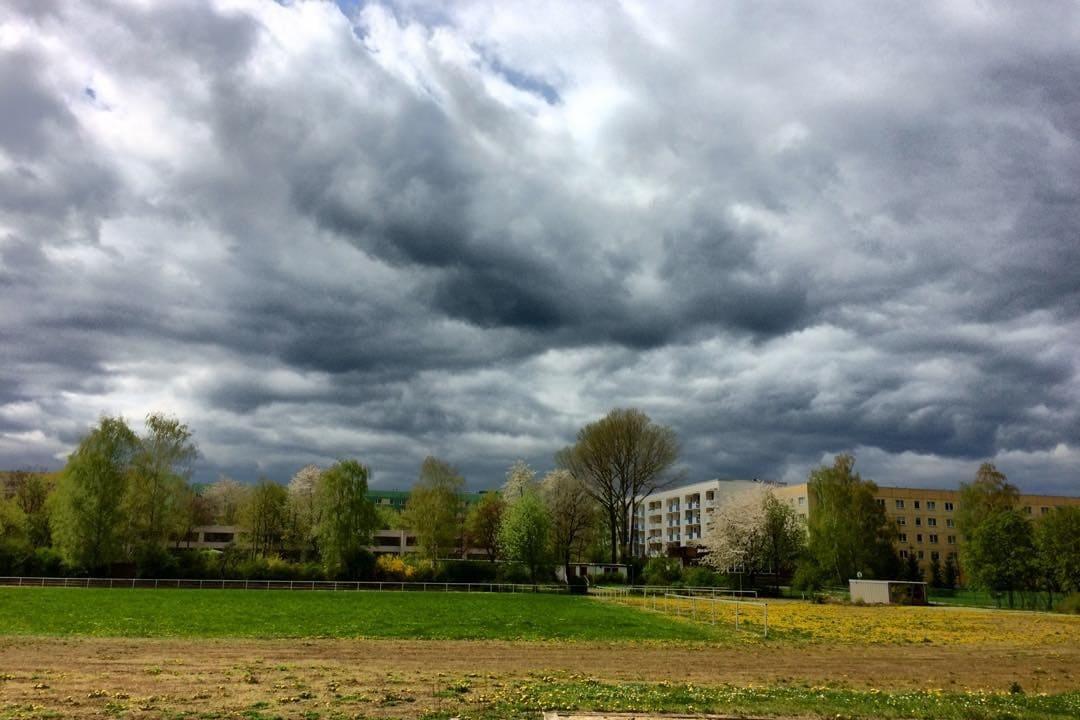 Das Grün am Sportplatz - © FotoGlut - Michael Stollmann