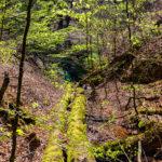 Landgrafenschlucht - © FotoGlut - Michael Stollmann