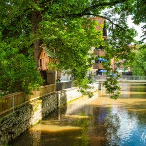 Erfurt von seiner schönsten Seite entdecken