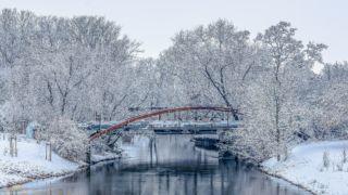 Winter an der Geraaue - © FotoGlut - Michael Stollmann