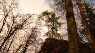 Burgenweg Kinding - © FotoGlut - Michael Stollmann