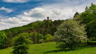 Veste Wachsenburg - © FotoGlut - Michael Stollmann