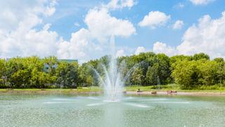 Wasserspiel im Auenteich - © Michael Stollmann
